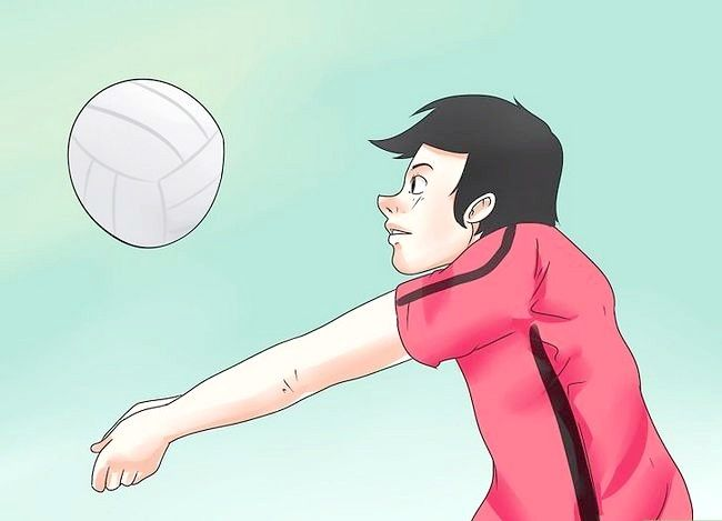 Bildtitel Volleyball Coach Step 11